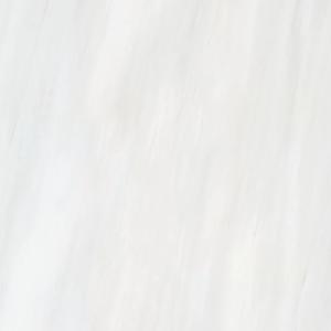 dolomite-white-24x24-tile-happy-floors