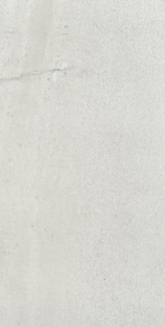 Rhin Gris blance