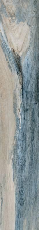 citrus-ocean-tile1